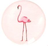 flamingo pastel