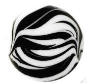 zebra bianco white